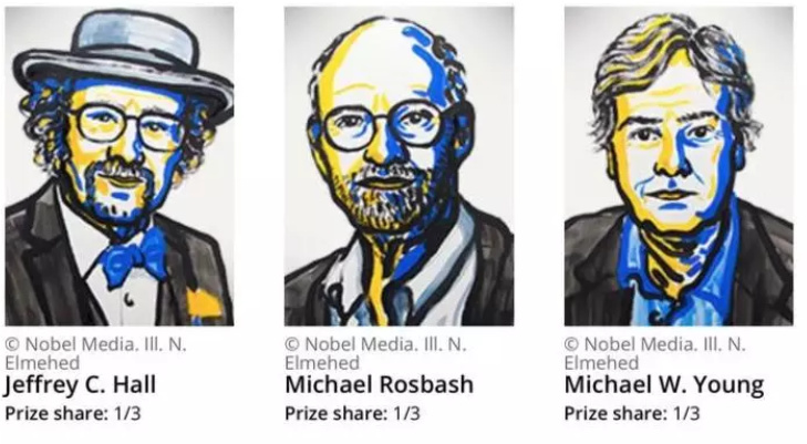 The Nobel Prize in physiology or medicine published: three us scientists by flies to take you to spy out the secret of
